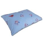 pillow_tsp